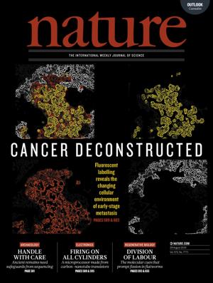 《自然》:Volume 572 Issue 7771